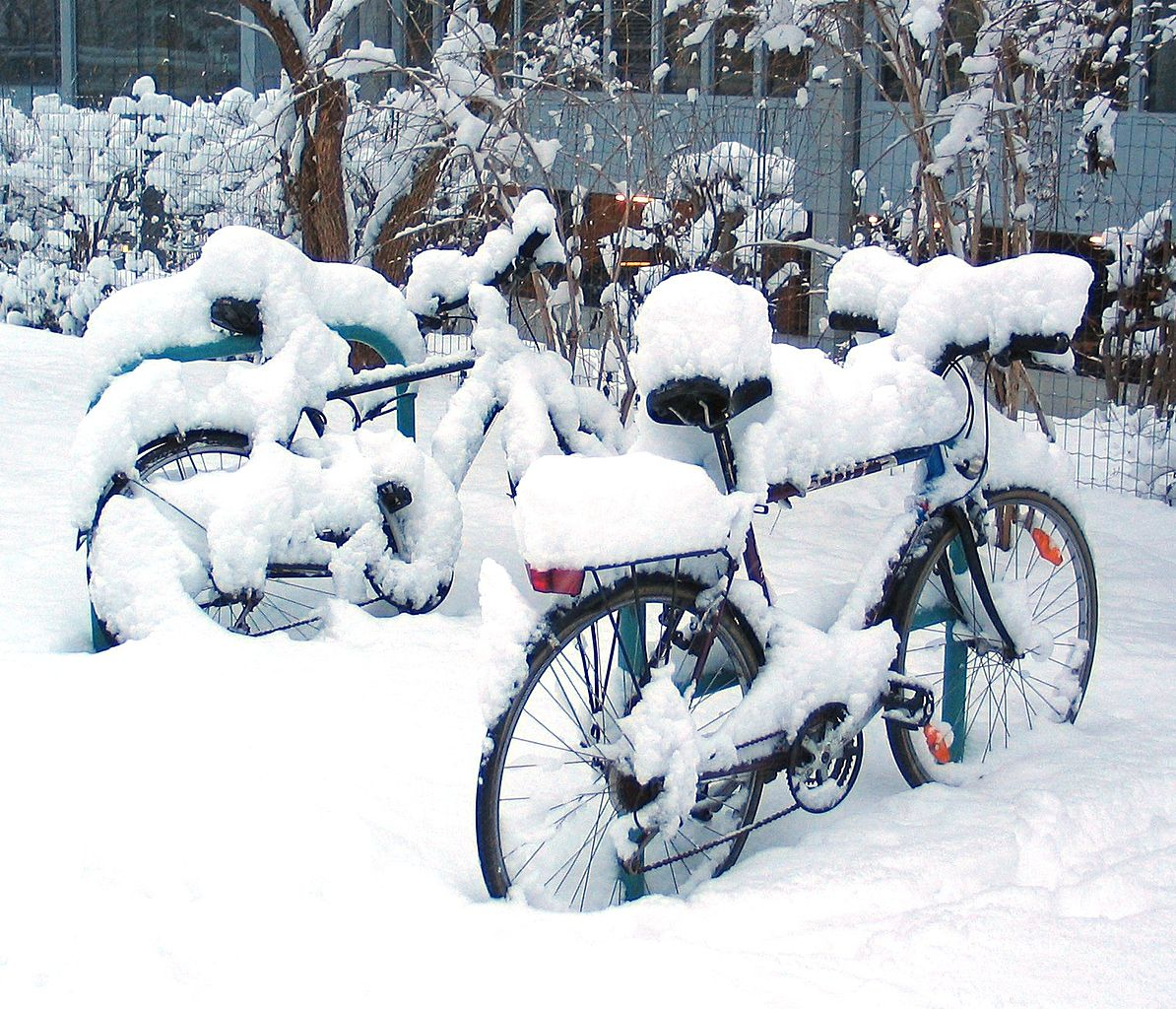 Bicycles covered in snow